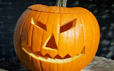 Surviving Halloween!